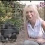 Programy o zwierzętach