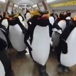 Pingwiny w metrze