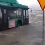 Niezłomy kierowca autobusu