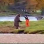Walka z grizzly