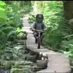 Rower bez pedałów