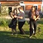 Zabawa na polsiej wsi