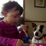 Psy + dzieci = słodkie wideo