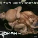 Japończyk kontra ośmiornica