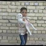 Dziecko ratuje szczeniaczka - WZRUSZAJĄCE!