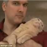 Jak nauczyć kota JODŁOWANIA?