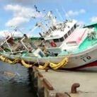 Łodzie i jachty po tsunami