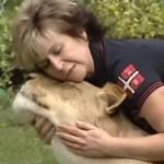 Lew zaatakował człowieka - w mieszkaniu!