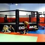 Zawodnicy MMA po treningu