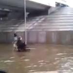 Pies RATUJE niepełnosprawnego z powodzi!