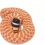 Co zrobić, by wąż wyglądał dostojnie?