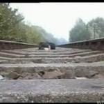 Idiota położył się pod pociągiem... I to nagrał!