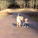Dziecko i pies - przyjaźń idealna
