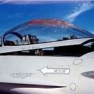Samoloty kontra PTAKI