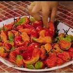 Hinduska kontra talerz piekielnie ostrych papryczek