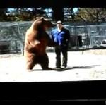 Niedźwiedź RZUCIŁ SIĘ na tresera!