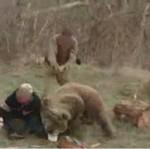 Atak niedźwiedzi