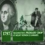 Krótka historia marihuany