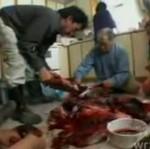 Obiad Inuitów
