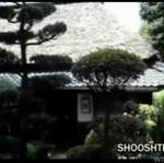 Dom prawdziwego ninja