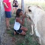 Lwy też lubią buziaczki!