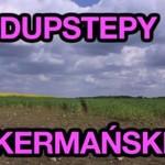"""Dubstepy Akermańskie"""