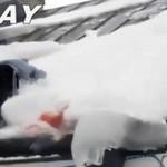 Odśnieżanie dachu - wpadka!