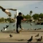Skateboarding - forma sztuki!