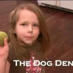 Psi dentysta