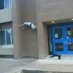 Wspinaczka na budynek - a był tak blisko...