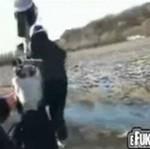 Popaprańcy strzelają do ludziz karabinu paintballowego