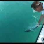 Karmienie olbrzymiej ryby