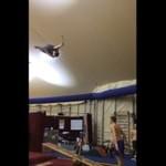Teeterboarding - trening TYLKO dla profesjonalistów!