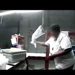 Pracownicy hurtowni zoologicznej ZNĘCAJĄ SIĘ nad zwierzętami! (DRASTYCZNE)