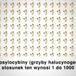Artykuł 62, czyli NARKOFOBIA po polsku