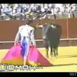 Nierówna walka z bykiem