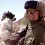 Amerykański żołnierz zabił szczeniaka!!!