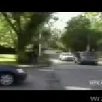 Robak na ulicy