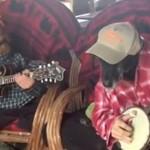 Psy grają na mandolinie i na banjo