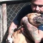 Poznajcie Sama, ofiarę walk psów