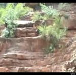 Skok z klifu - połamał się?
